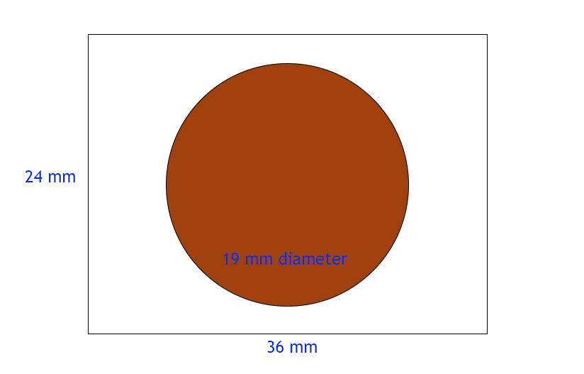 Imagine the rectangle is your camera's sensor and the circle is a penny - that is the 1:1 size ratio that defines macro photography